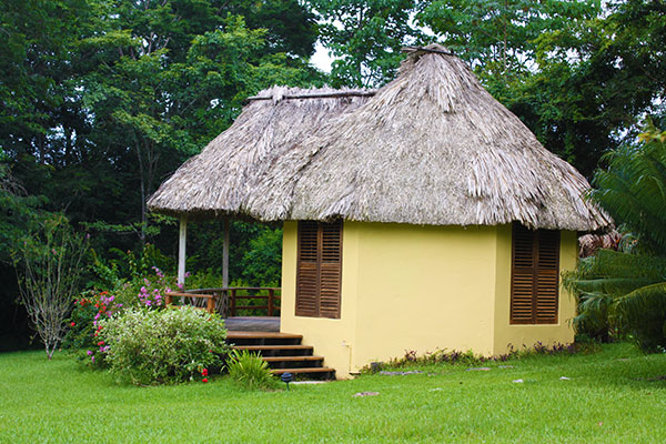 Thatched cabana